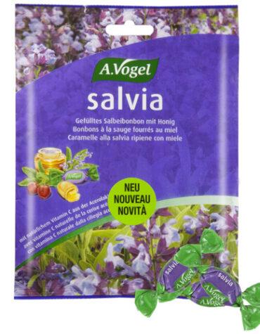Descubre nuestros aperitivos y frutos secos SALVIA BONBONS 75 grs
