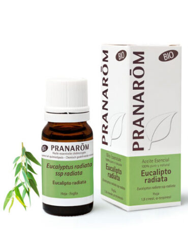 Usa y decora tu aromaterapia ACEITE ESENCIAL EUCALIPTO RADIATA 10ML